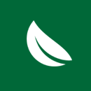 gum tree leaf icon